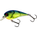 Chartreuse Blue Craw